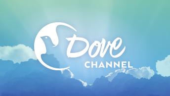 brandTile_Dove
