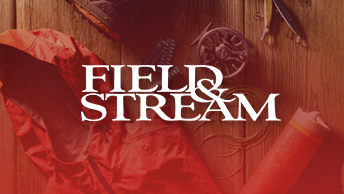 brandTile_fieldAndStream