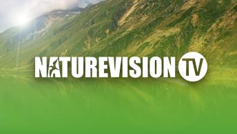 brandTile_natureVision